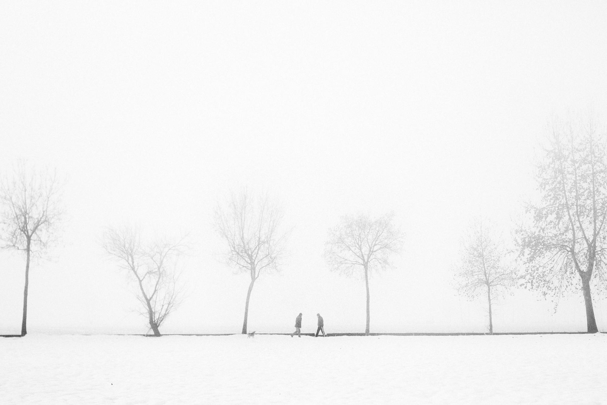 Nero su Bianco, 2015