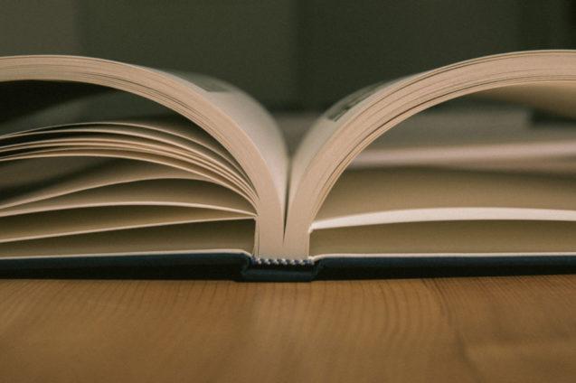 fine-art-book8